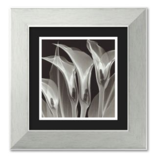 Four Callas #3 Framed Wall Art
