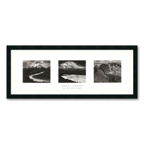 Our National Parks Framed Wall Art