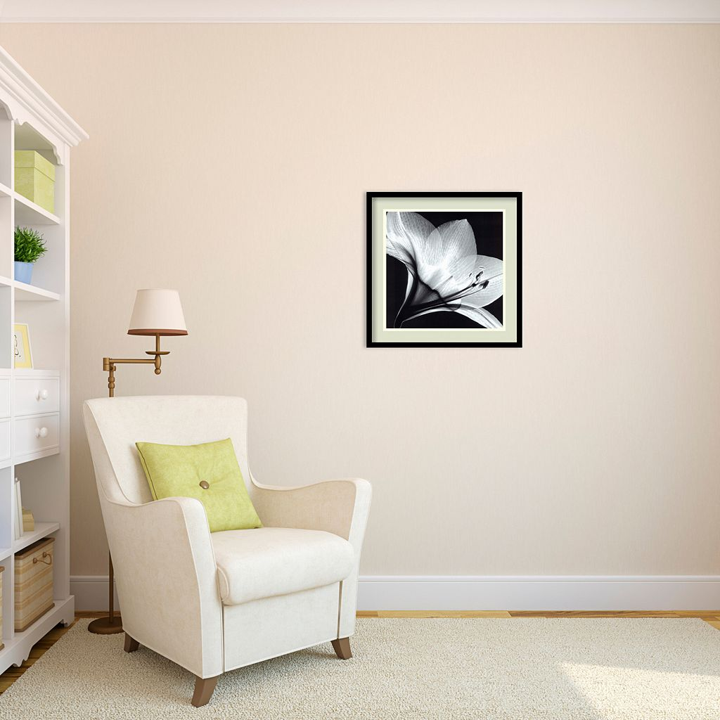 Amaryllis I Framed Wall Art
