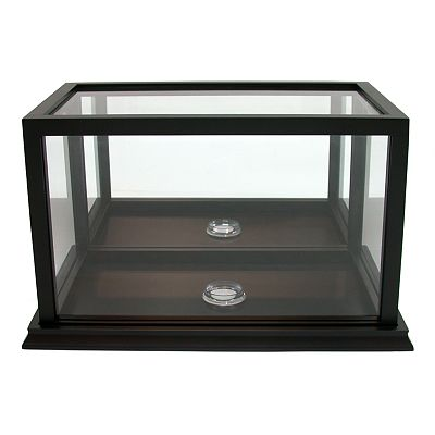SONOMA life + style Football Display Case
