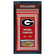 Georgia Bulldogs National Champions Framed Wall Art