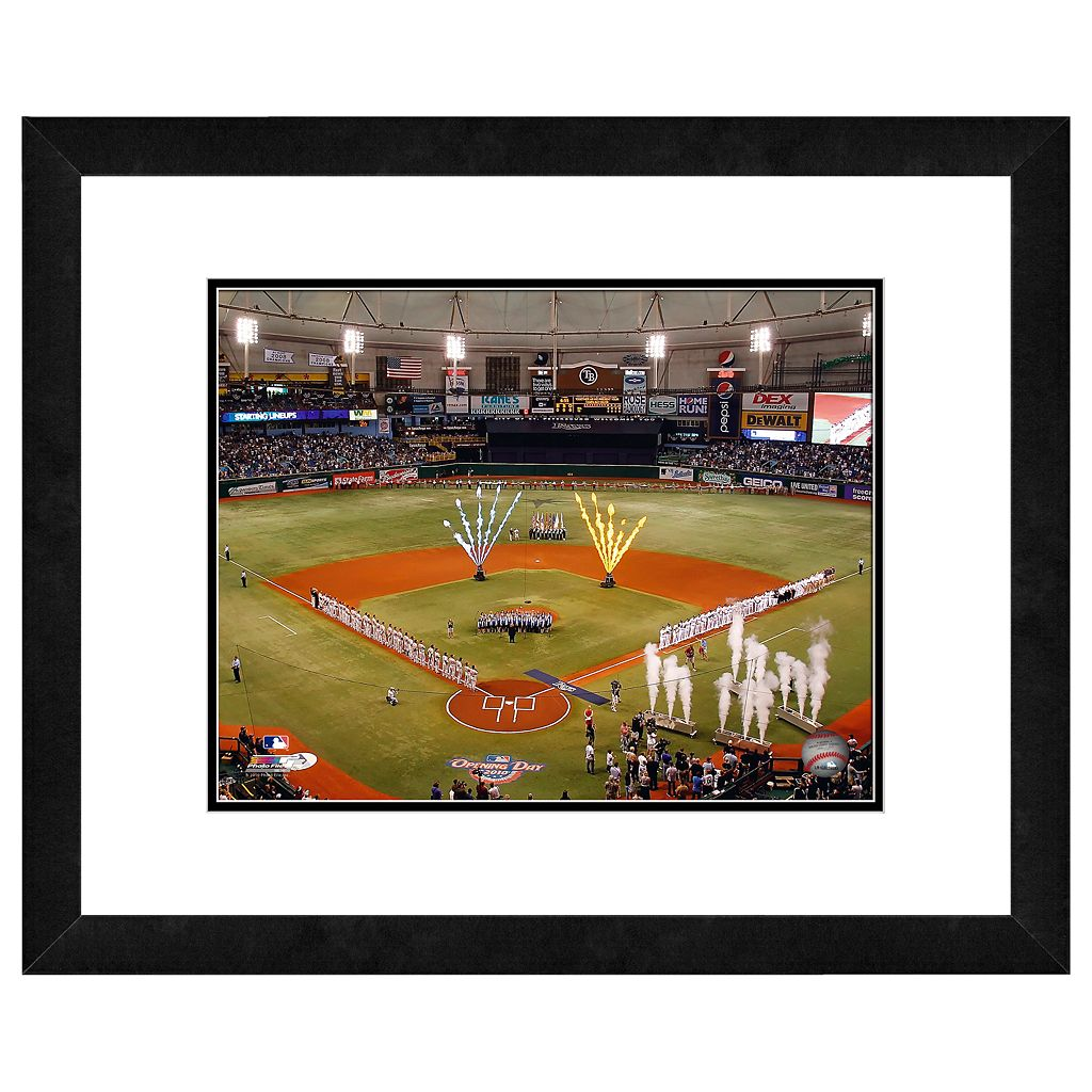 Tropicana Field Framed Wall Art