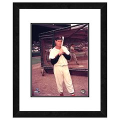 Ted Williams Framed Player Photo