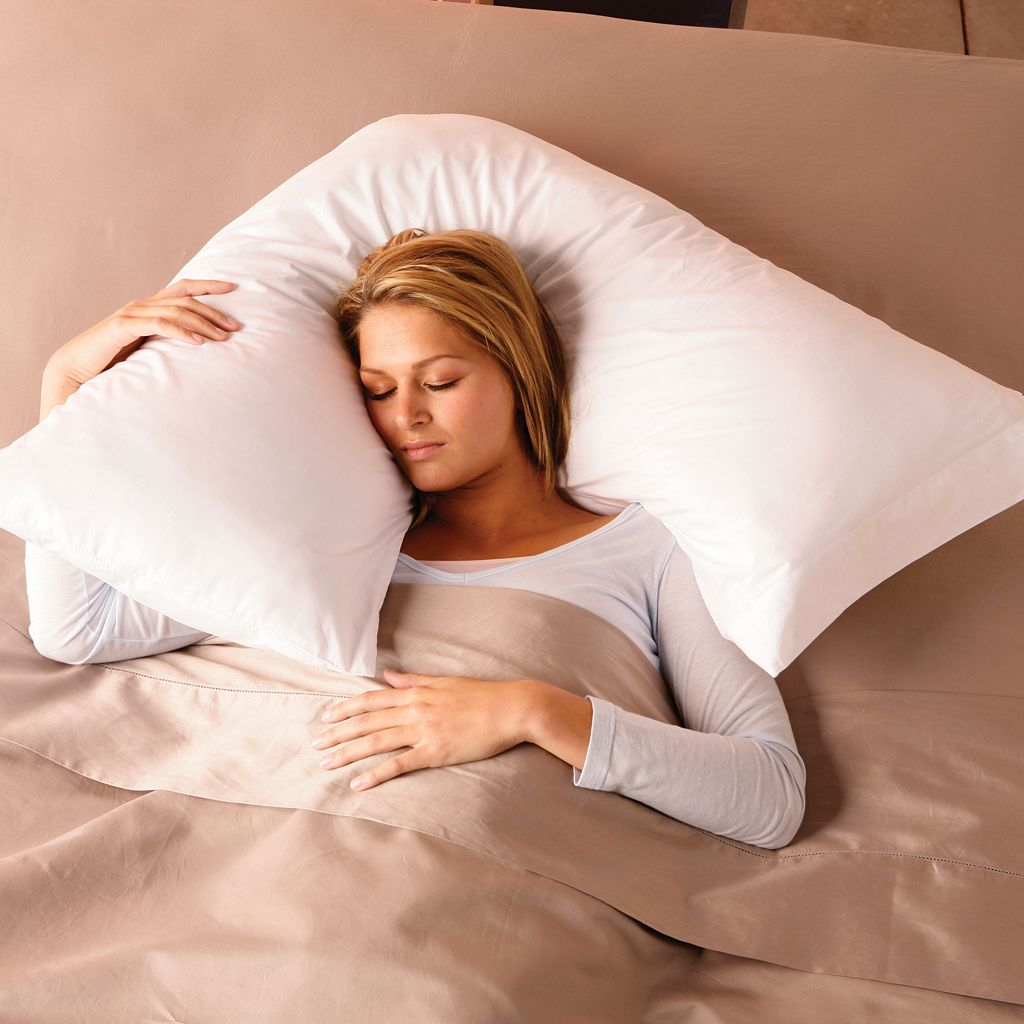 Hollander Sleep Products Boomerang Pillow