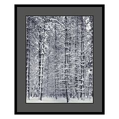 'Pine Forest in the Snow, Yosemite National Park' Framed Art Print by Ansel Adams