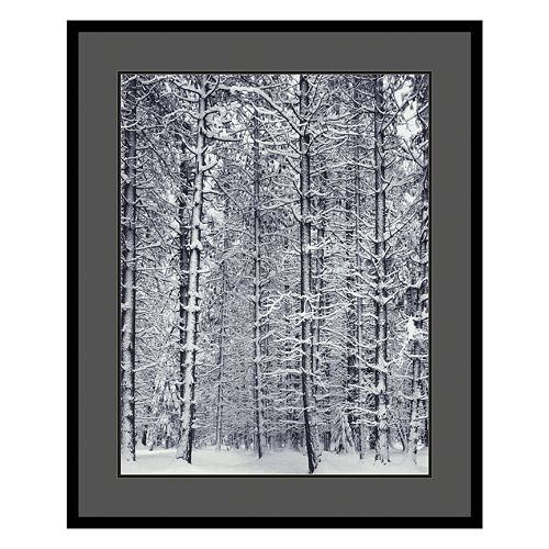 """Pine Forest in the Snow, Yosemite National Park"" Framed Art Print by Ansel Adams"