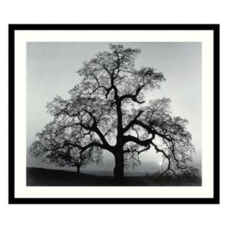 Oak Tree, Sunset City, California, 1962 Framed Art Print by Ansel Adams