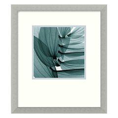 'Lily Leaves' Framed Art Print by Stephen N. Meyers