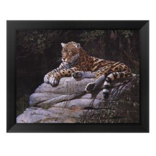 Jaguar on Rock Framed Art Print by Don Balke