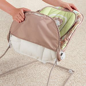 Fisher-Price 2-in-1 Swing and Rocker
