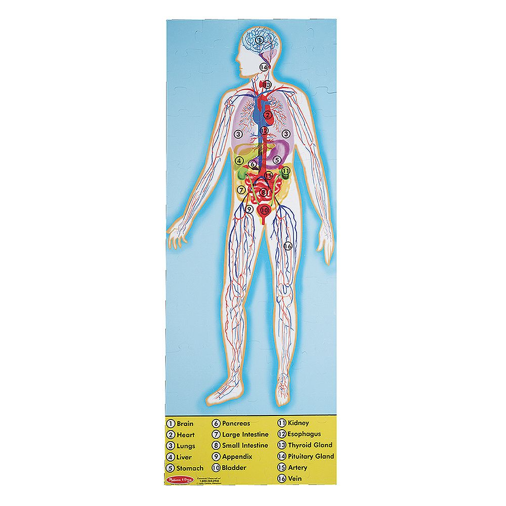 Melissa & Doug Human Anatomy Double-Sided Floor Puzzle