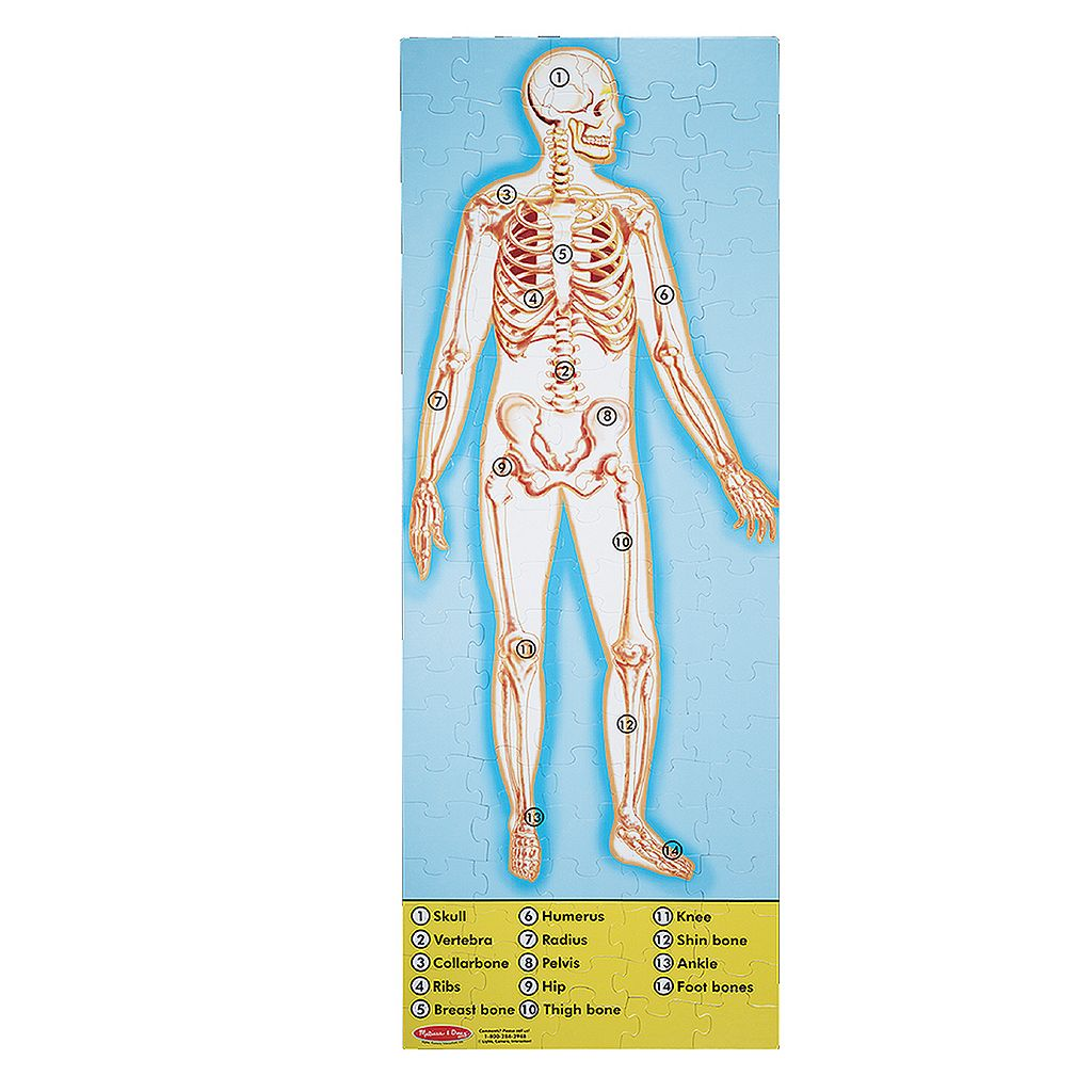 Melissa and Doug Human Anatomy Double-Sided Floor Puzzle