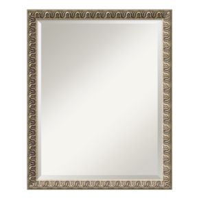 Amanti Art Argento Champagne Finish Traditional Large Wall Mirror