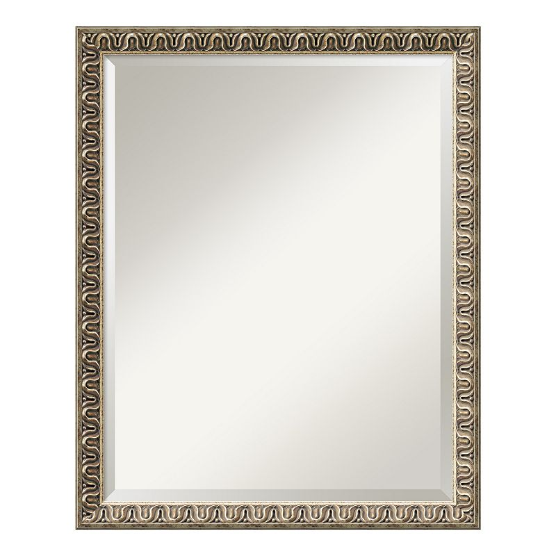 Amanti Art Argento Champagne Finish Traditional Large Wall Mirror, Brown
