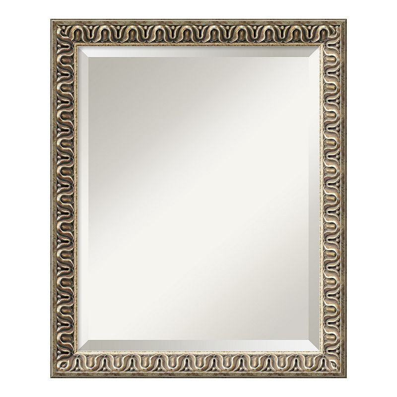 Amanti Art Argento Champagne Finish Traditional Wall Mirror, Brown