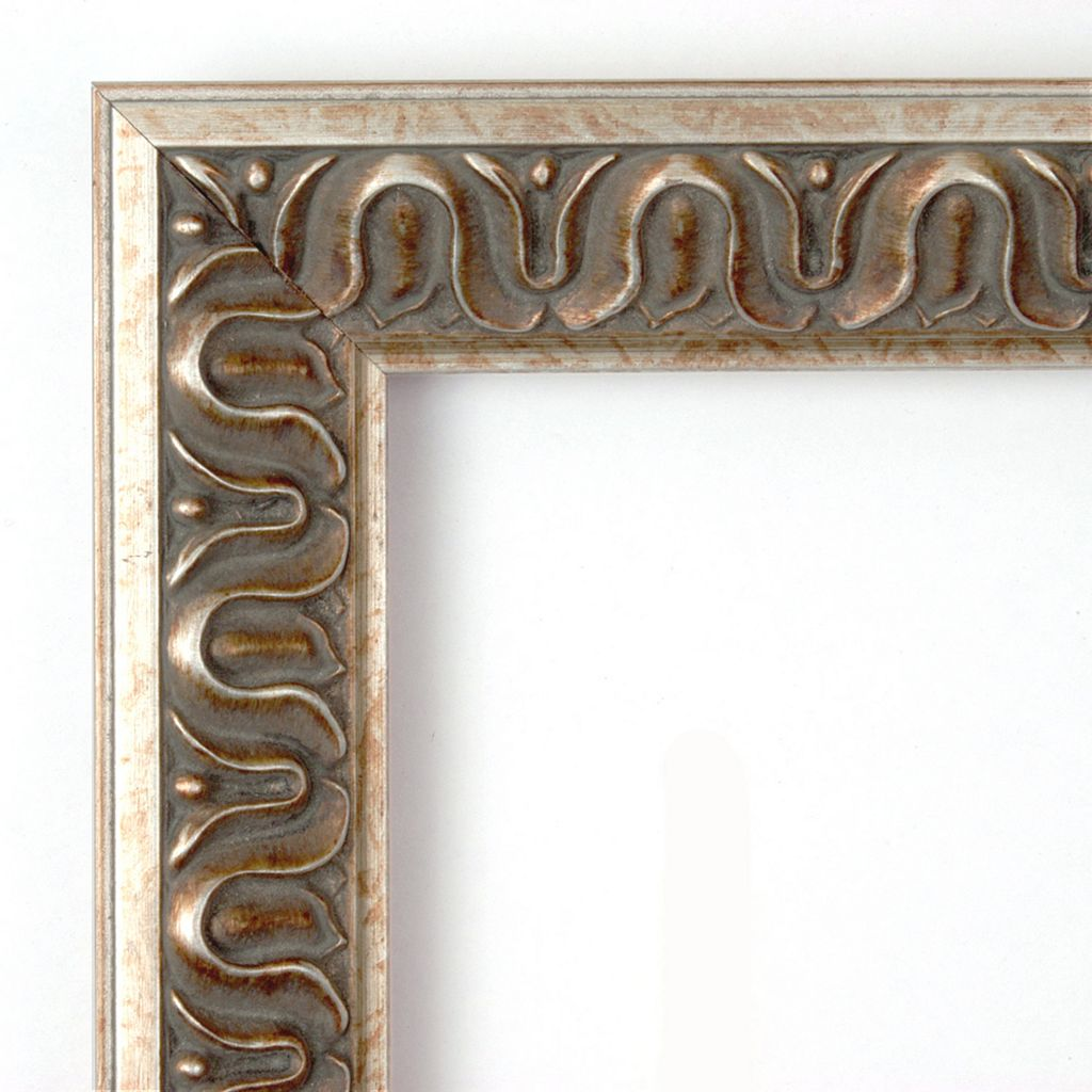 Amanti Art Argento Champagne Finish Traditional Wall Mirror