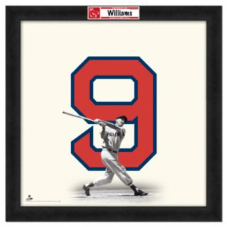 Ted Williams Framed Jersey Photo