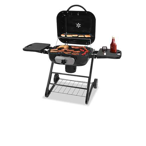 Gas Grills, Charcoal Grills & Electric Grills