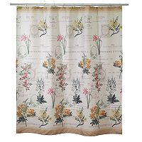 Avanti Alana Shower Curtain Collection