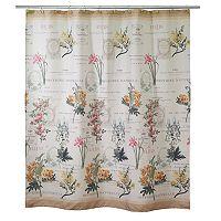 Avanti Alana Shower Curtain Collection