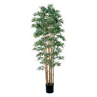 <p>nearly natural Silk Japanica Bamboo Trees</p>