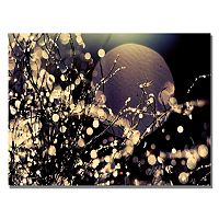 ''Moonrise in Fairyland'' Canvas Wall Art
