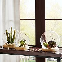 Madison Park Amory Bubble Terrarium Table Decor Collection