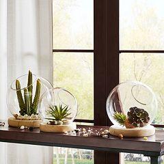 Madison Park Amory Bubble Terrarium Table Decor Collection