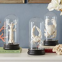 Madison Park Signature Artificial Bleached Sea Creature Table Decor Collection