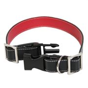 Royce Leather Dog Collar