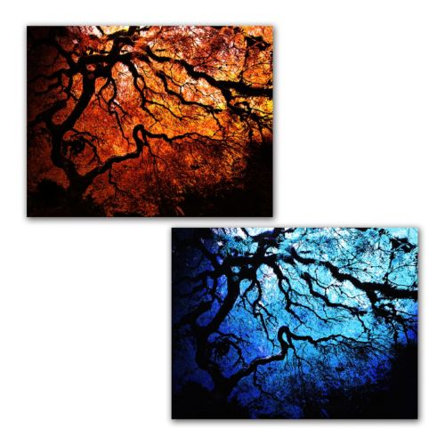 2-pc. ''Japanese Fire and Ice Trees'' Canvas Wall Set Art by John Black