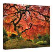 ''Japanese Tree'' Canvas Wall Art by John Black