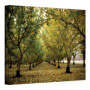 ''Fall Orchard'' Canvas Wall Art by Kathy Yates