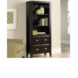 bookshelves & bookcases