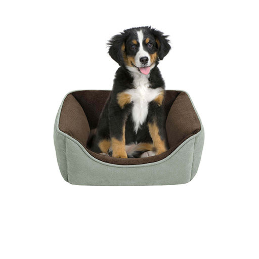 Pet Beds, Bedding