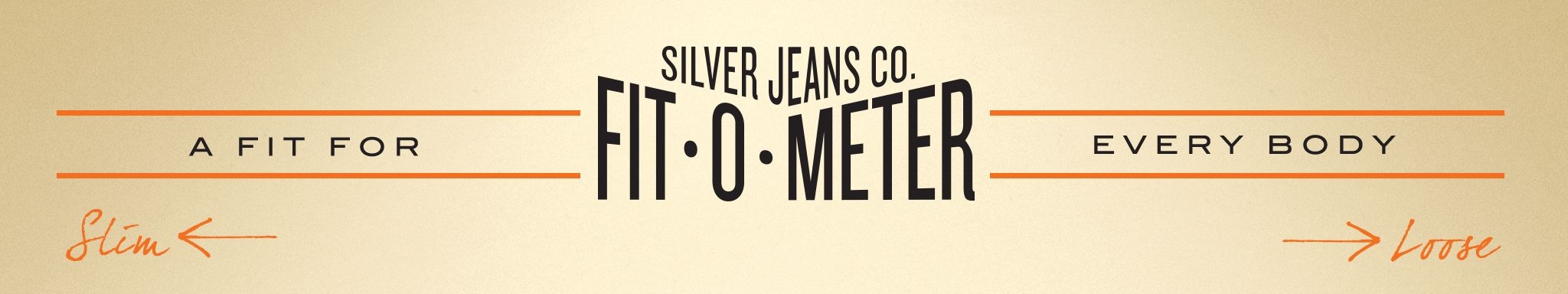 Retro looking Silver branded logo for Fit - o - Meter