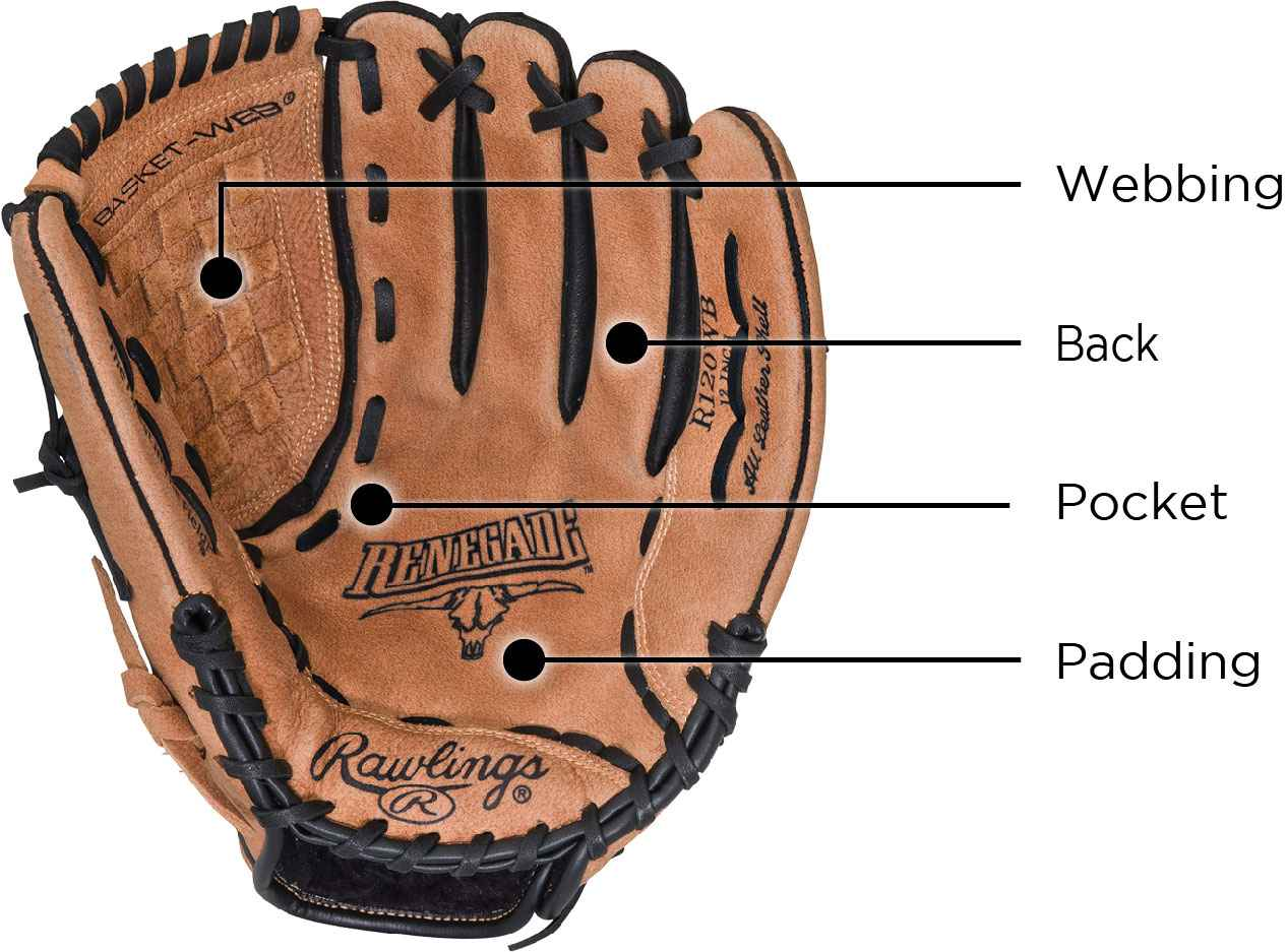 Baseball/Softball Glove—Webbing—Back—Pocket—Padding